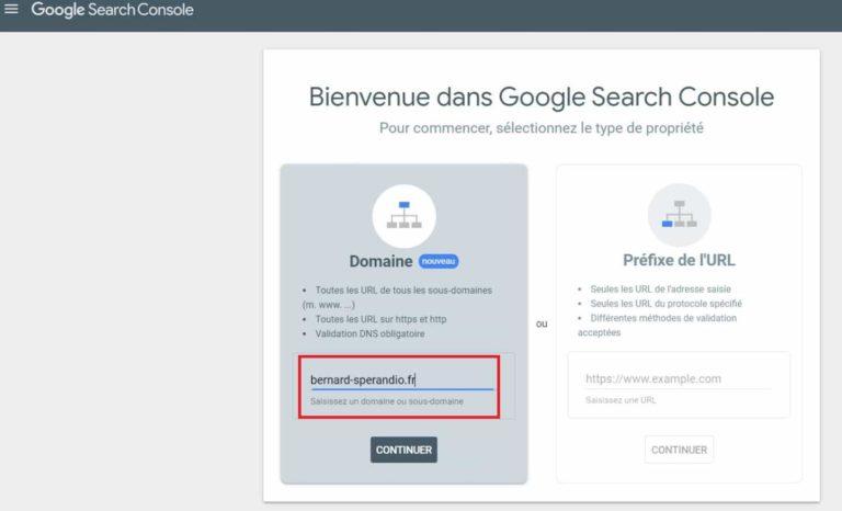Google Search Console -Selection du type de propriété
