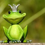 Screaming Frog : 11 astuces à connaître absolument !