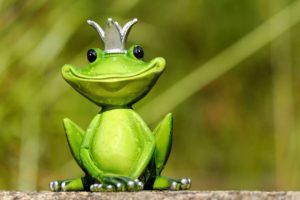Read more about the article Screaming Frog : 11 astuces à connaître absolument !