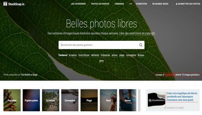 Banque d'images gratuites - StockSnap