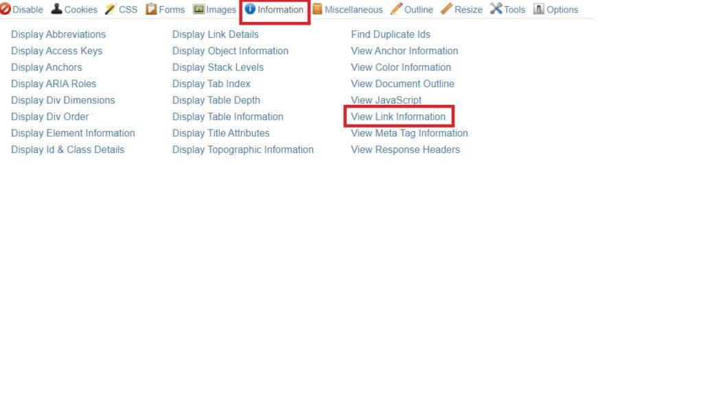 Extension SEO Chrome Web Developer - Onglet information