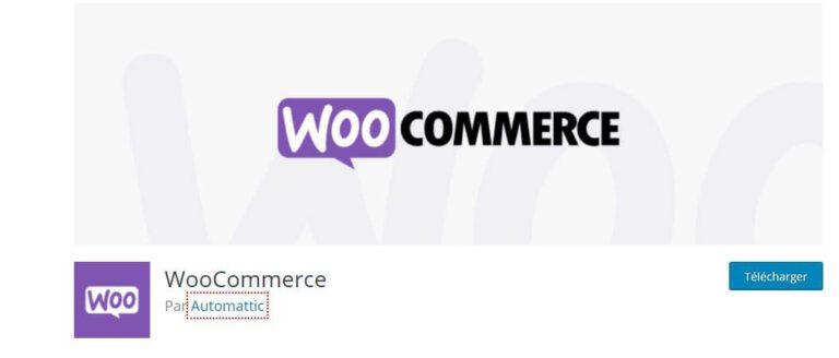 Plugin WordPress WooCommerce