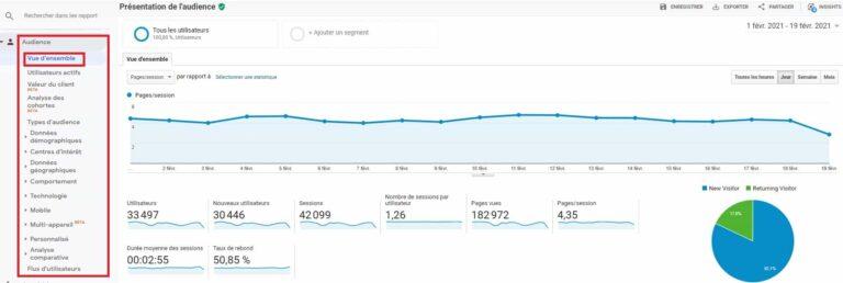 Rapport d'audience Google Analytics - Vue d'ensemble
