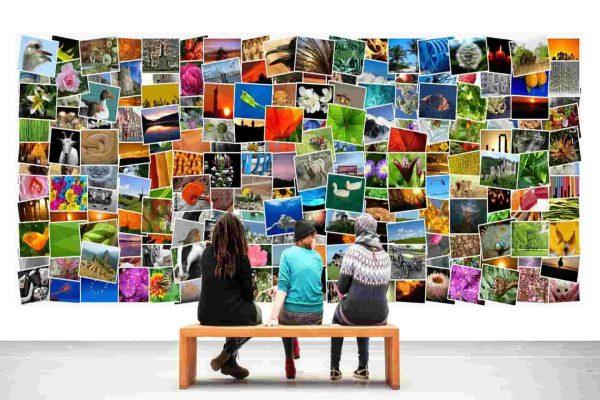 Banque d'images gratuites et libres de droits