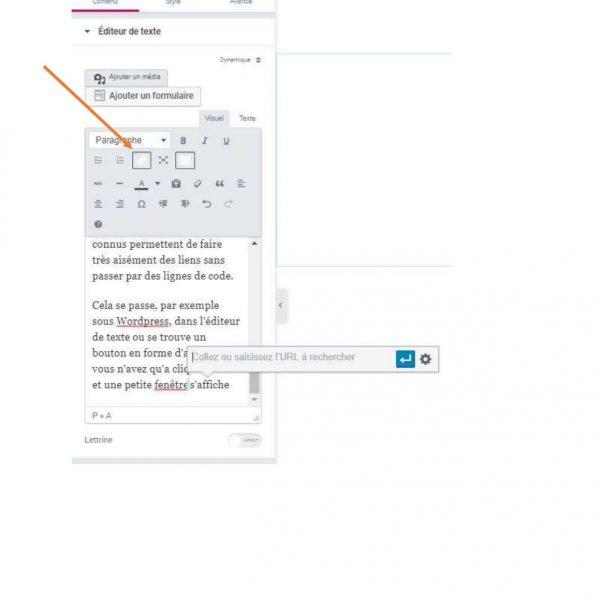 Éditeur de texte de WordPress