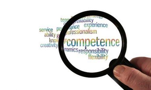Qualités d'un consultant SEO Cambrai